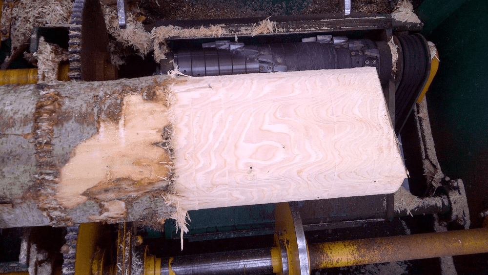 s11-min